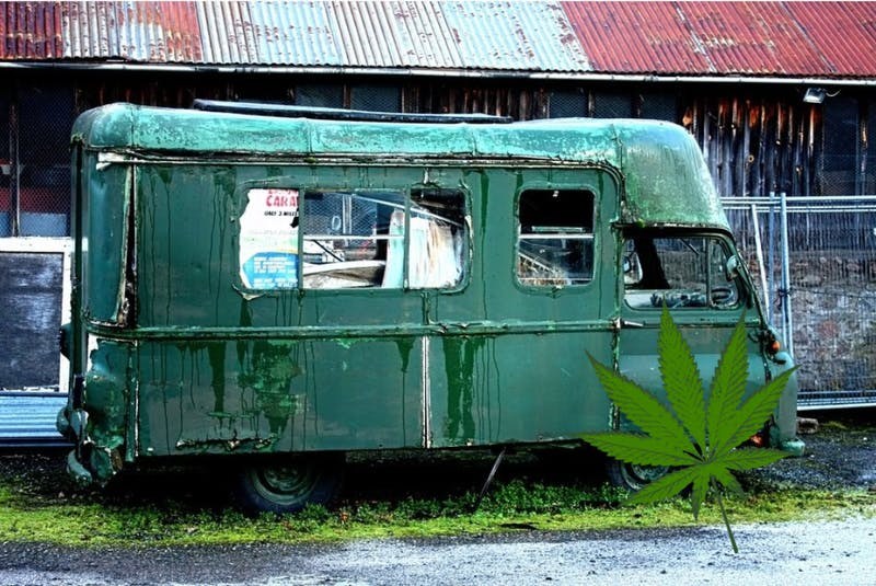 Stoner Freshman Excited For Pot Truck Reopening