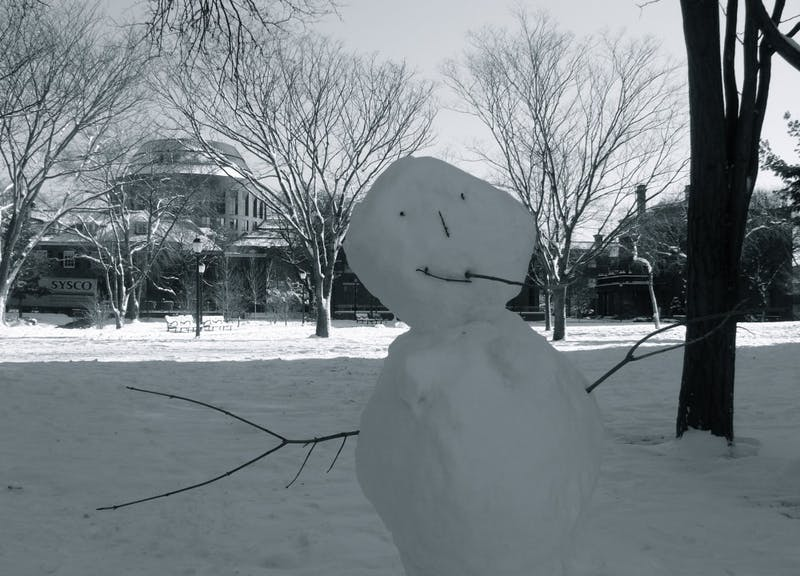 ShutterButton: Snowman's Sartorial Conundrum Solved
