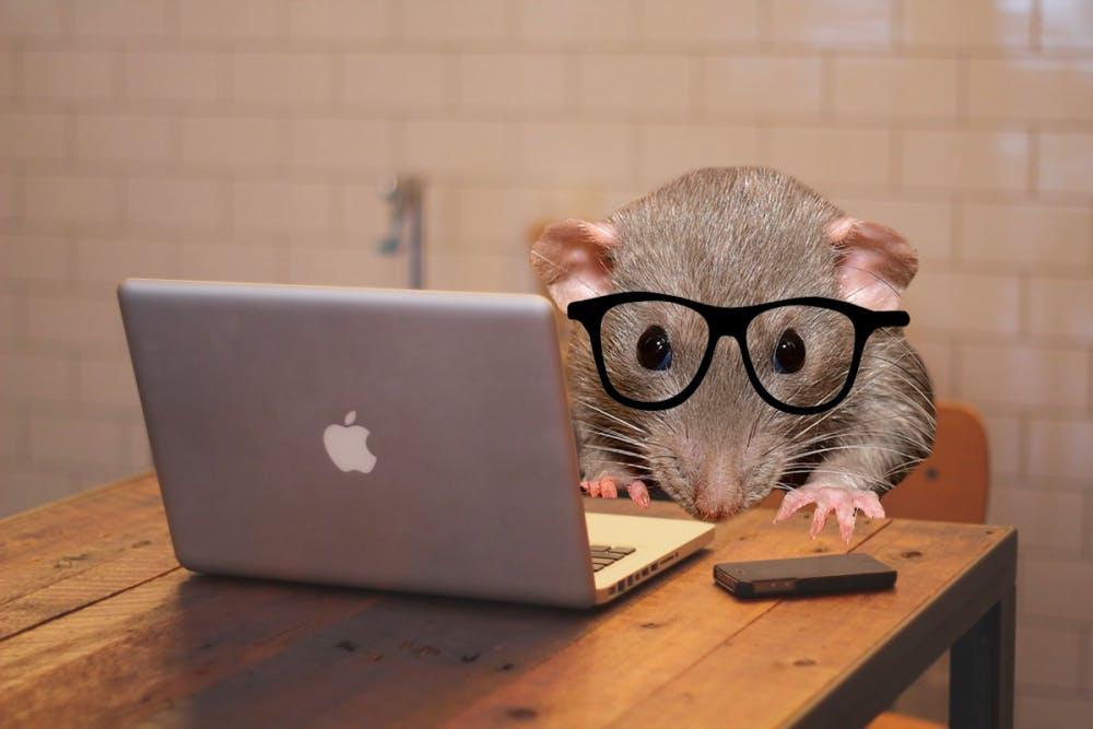 mouselaptop
