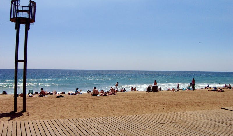 OP-ED: I'm Sipping Wine on a Barcelona Beach and Having Serious FOMO