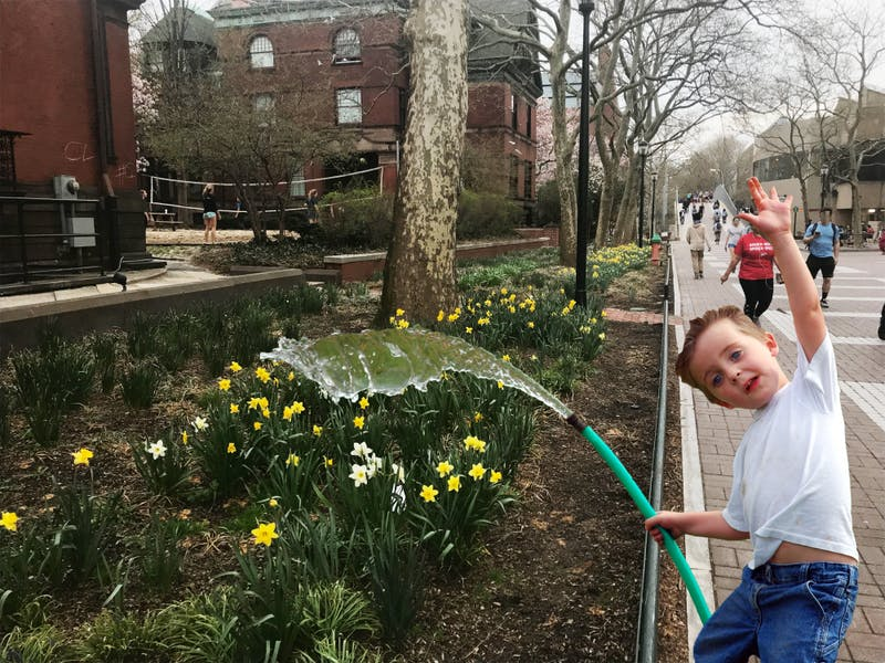 All Penn Landscaping Decisions Reduced to What Flowers Will Bloom for Quaker Days
