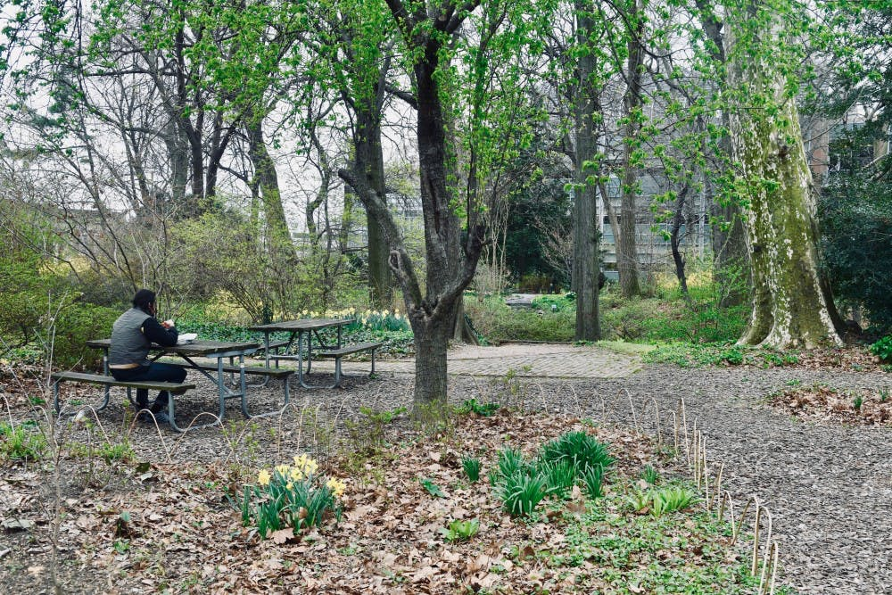 After BioPond Development, Penn Reaffirms Commitment to Green Space with Marijuana Dispensary