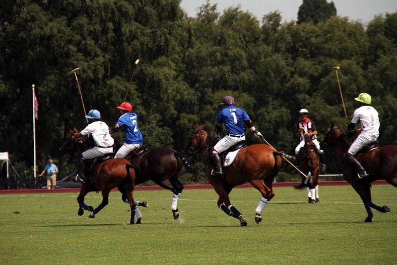 Penn Intramural Polo League Off to Slow Start