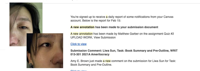 BREAKING: A New Annotation Has Been Added to Your Canvas Submission