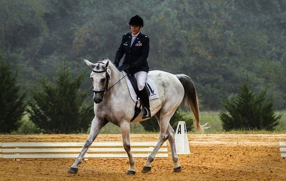 equestriancompetitiondressageriderhorse573770