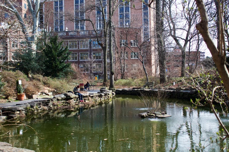 Penn to Get Serious About Bio Pond Skunk Infestation
