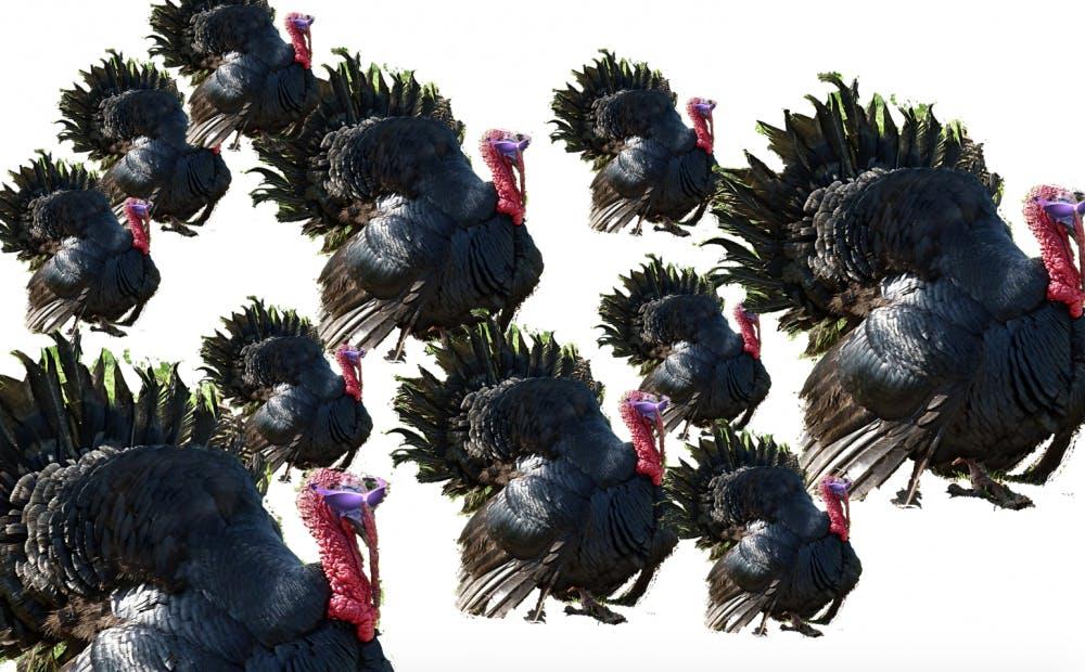 turkey_pardon_3