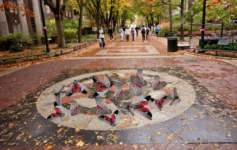 With Midterms Looming, Spotted Lanternflies Thrive on the Compass