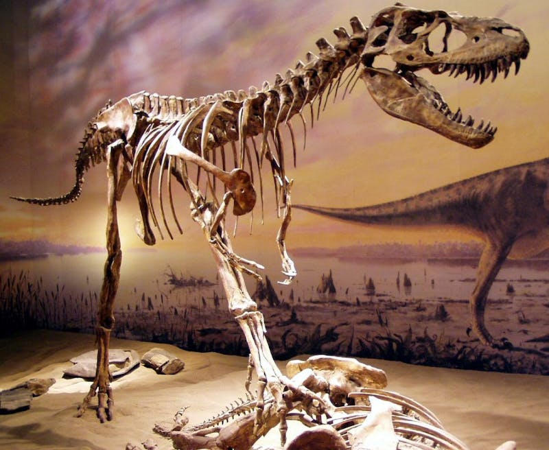 Fossil Free Penn Occupies Penn Museum, Will Not Leave Until All Dinosaur Skeletons Are Removed