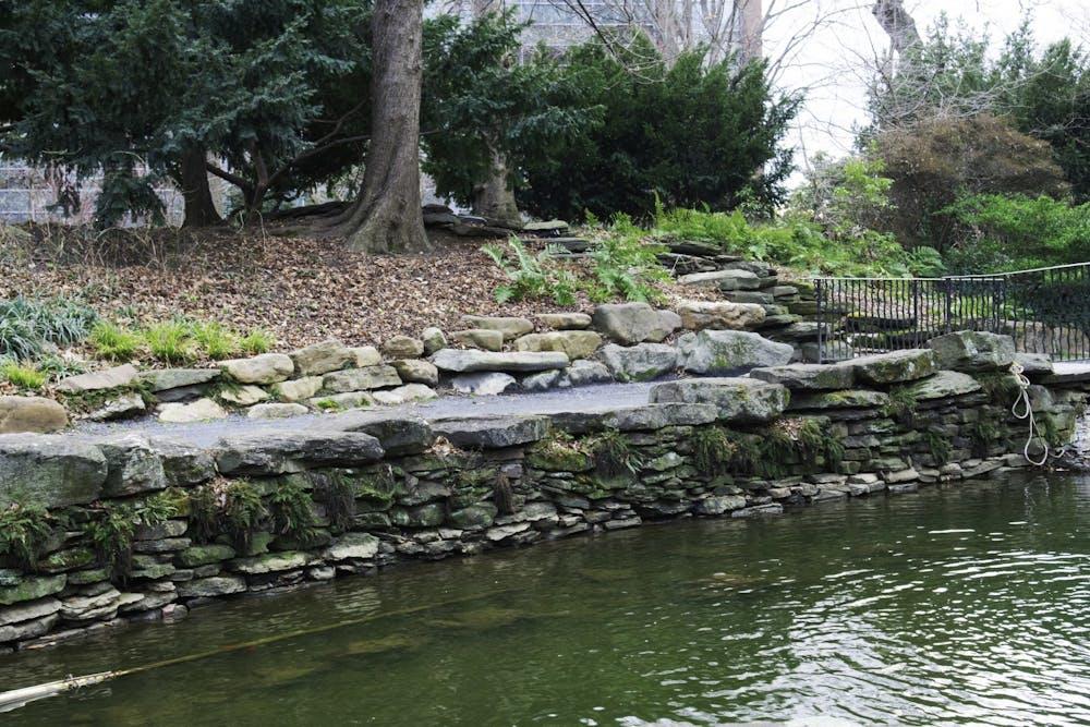 bio-pond