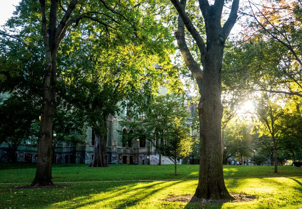 college-hall-campus-summer-green-environment-climate-change-course