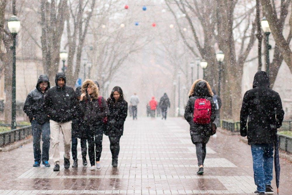 snow-locust-walk