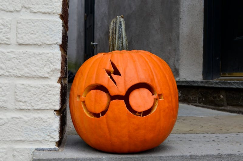 Photo Gallery | Chestnut Hill Harry Potter Festival