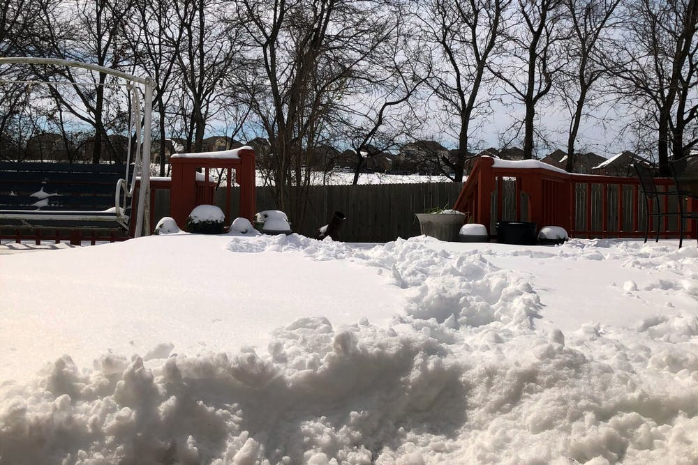 snow-in-texas-brian-vu-contributed-image