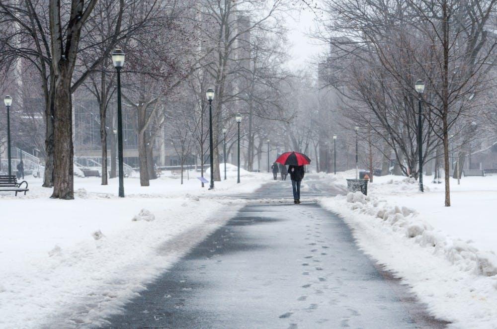 snow-joy