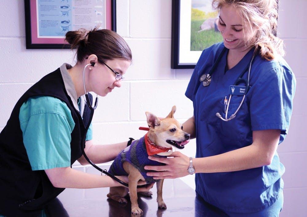 Penn Vet Free Dog & Cat Vaccination Clinic