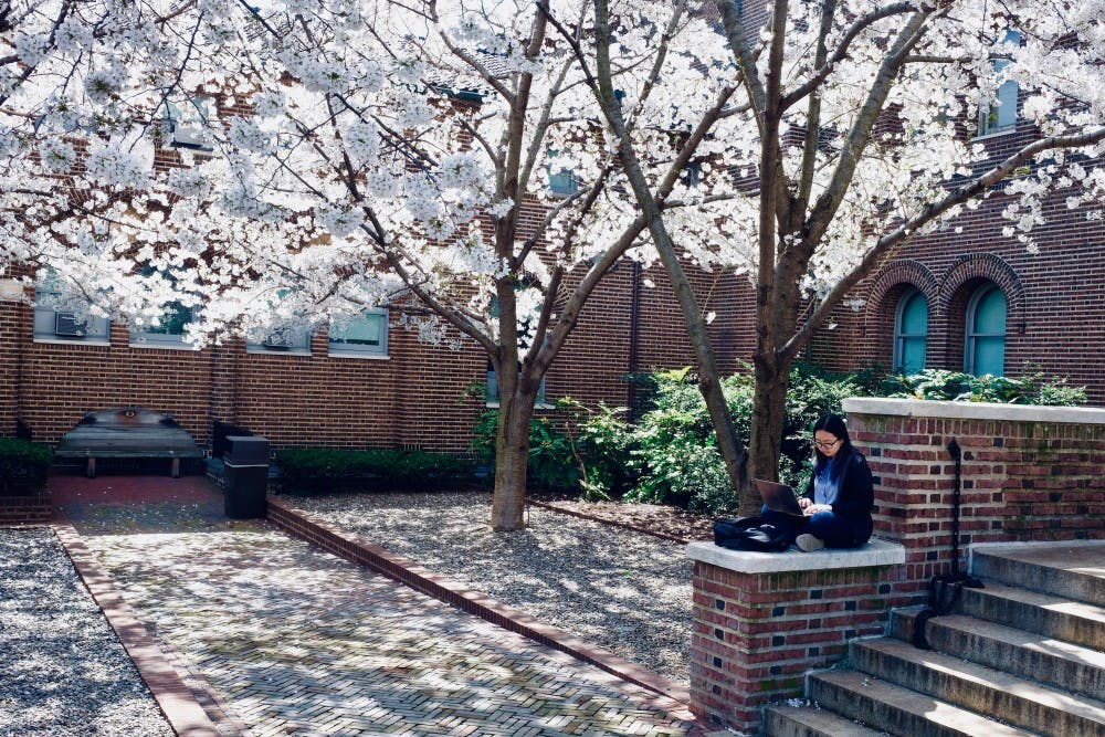 Photo Essay | A tour of the 20 best outdoor study spots on campus
