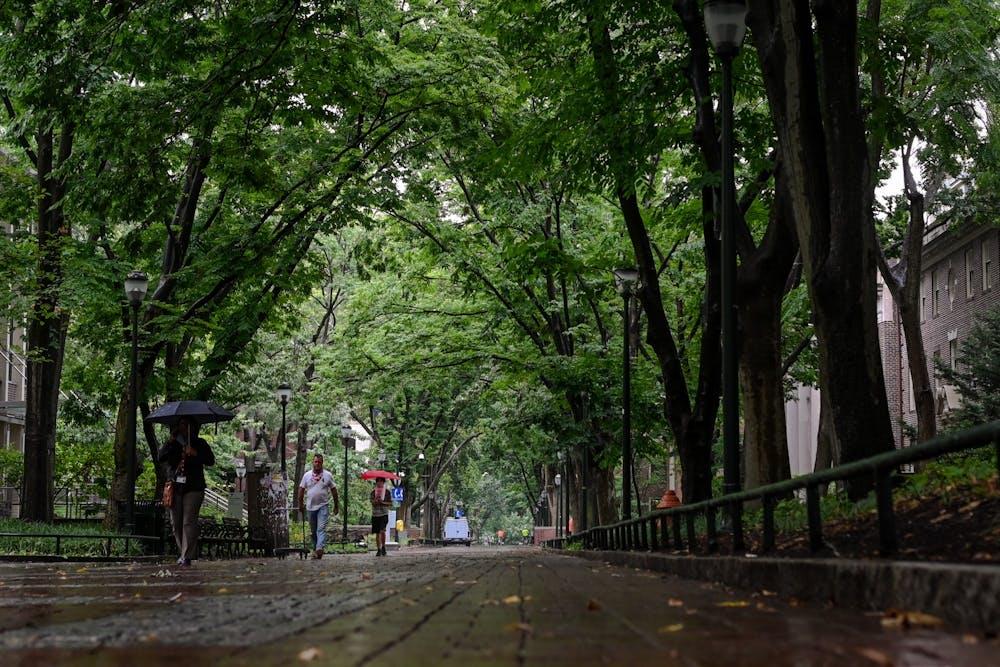locust-walk-summer-rain-campus