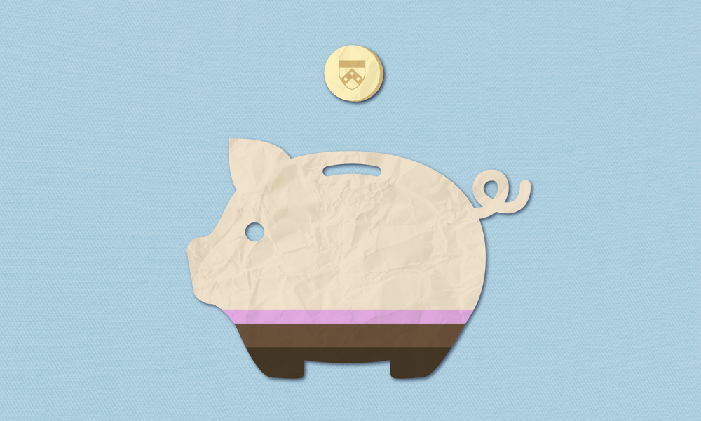 dp-piggy-bank-1