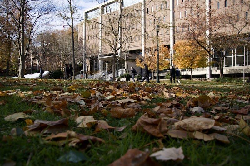 Penn Campus Fall Leaves.jpg