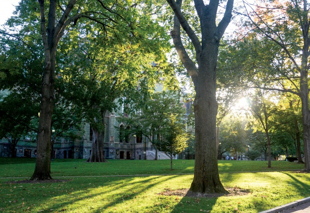 The petition created last week asks Penn President Amy Gutmann to make Penn a sanctuary campus for undocumented students, staff and their family members.