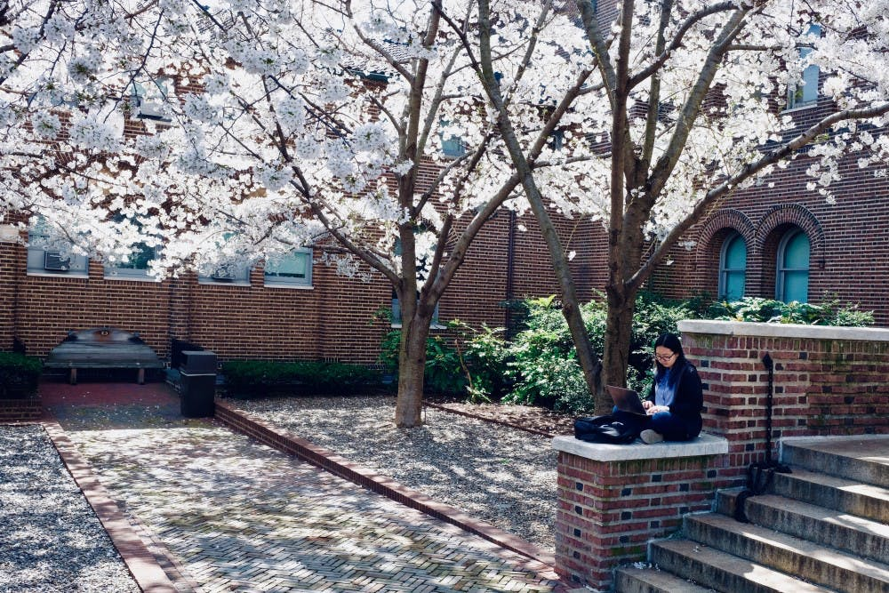 Photo Essay | A tour of the 20 best outdoor study spots on