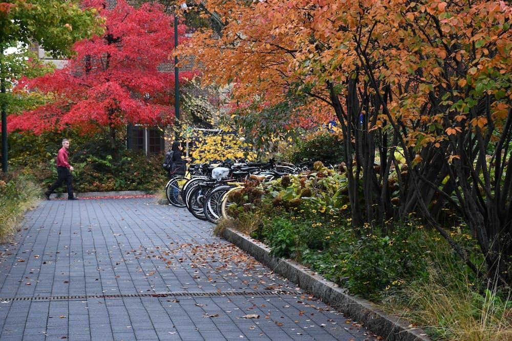 fall-campus-rainy-day-walkways