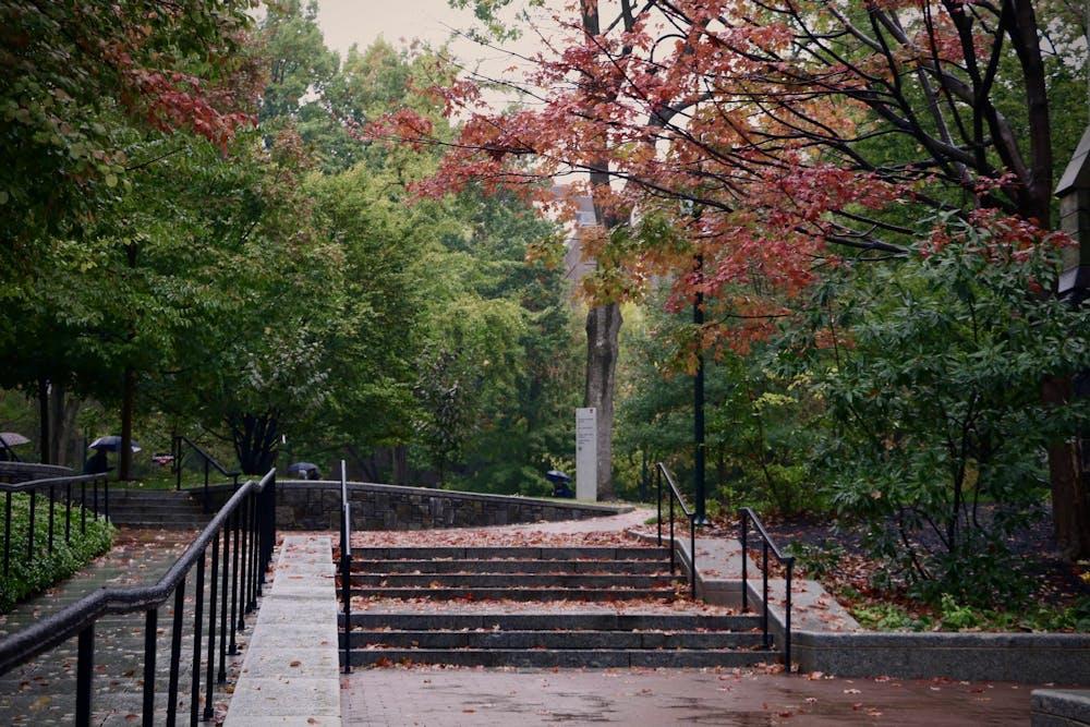 fall-campus-rainy-leaves