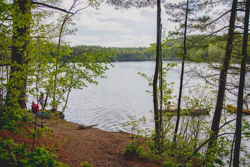The rules for recreation at Mink Brook will be strictly enforced this summer.