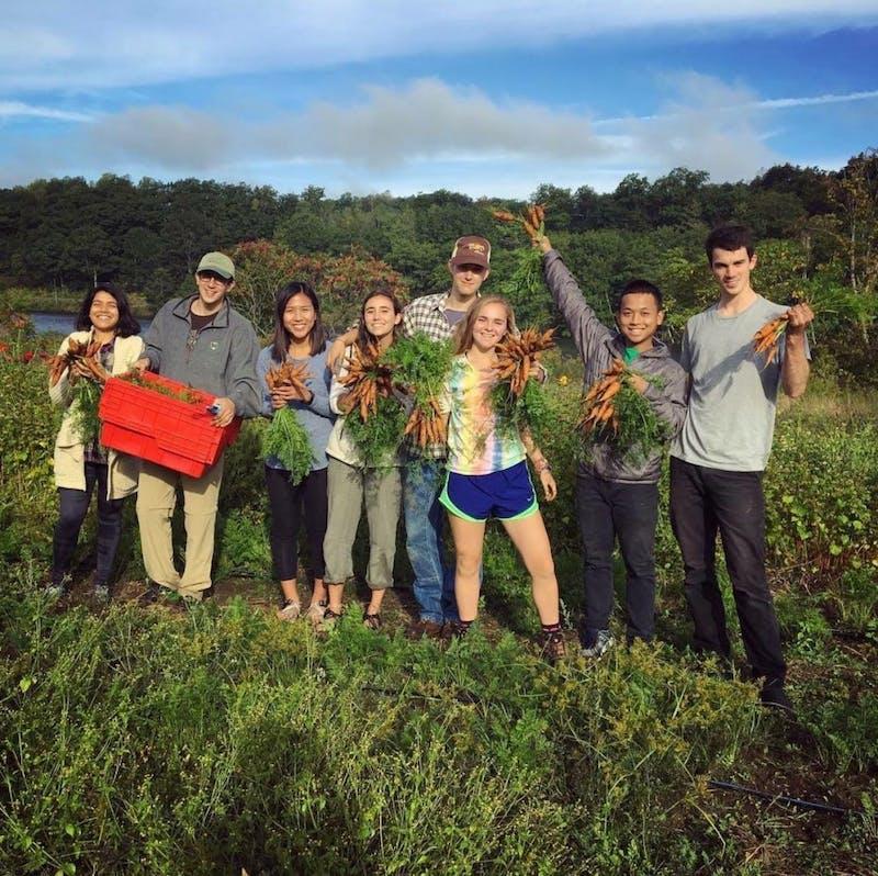 Farm club gathers at the Dartmouth Organic Farm.Courtesy of Sophie Neuhaus'20.