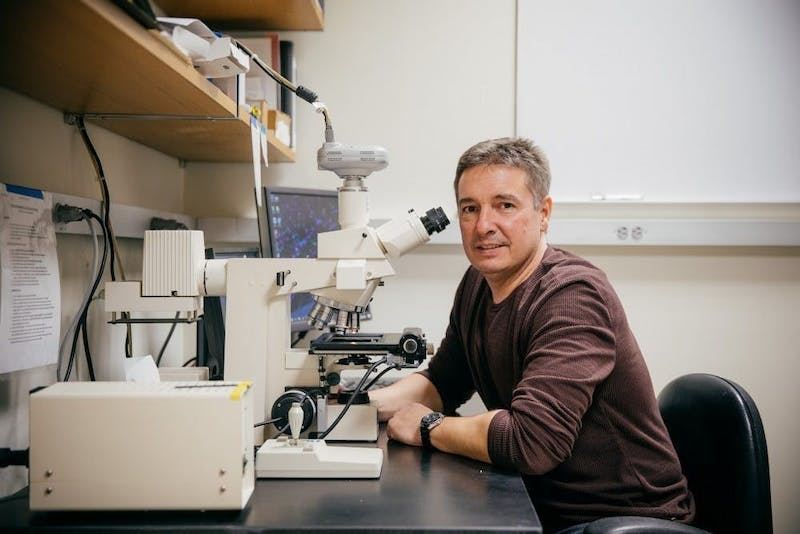 Dave Bucci was chair of the psychological and brain sciences department from 2015 to 2019.