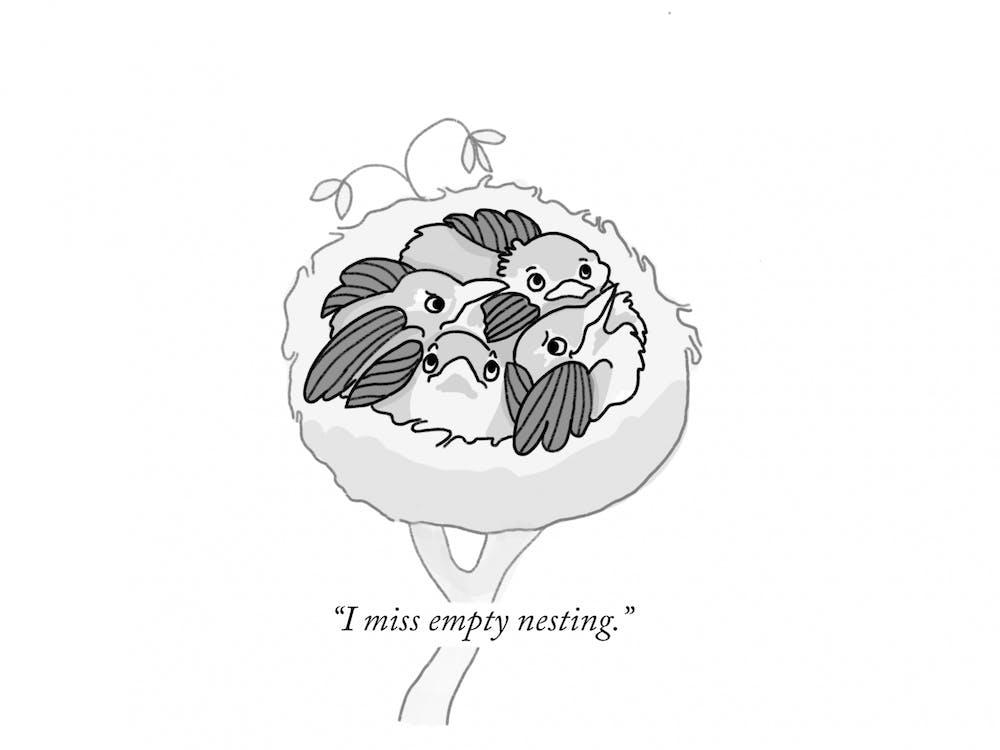 i-miss-empty-nesting