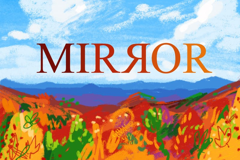 mirror cover fall.jpg