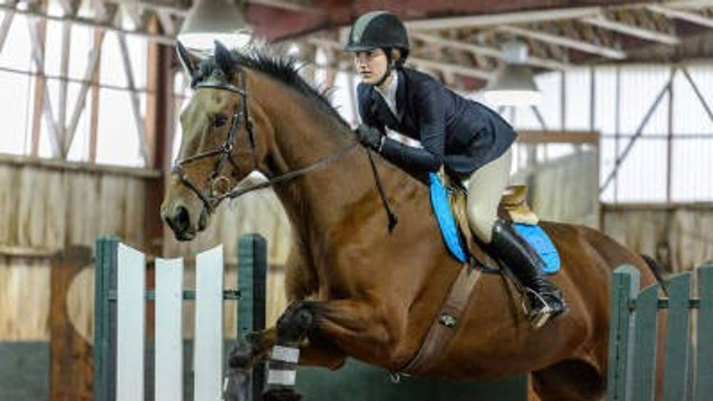 3-7-16-sports-equestrian-courtesy