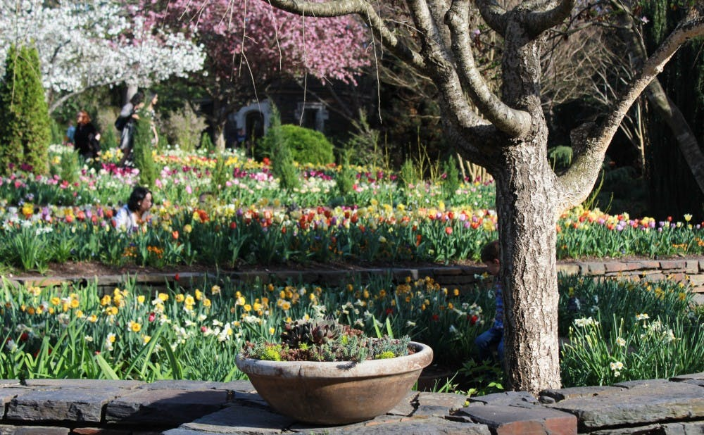 <p>Vibrant blooms transform the Duke gardens into a world of color.</p>