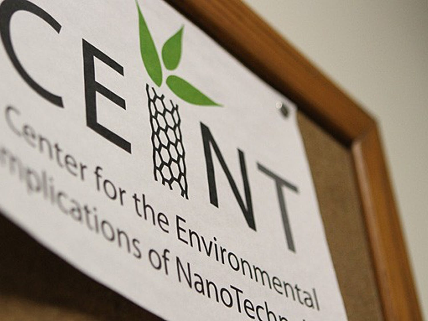 Researchers at the Center for the Environmental Implications of NanoTechnology are looking into the effects of nanoparticles on natural systems, which are currently not well understood.