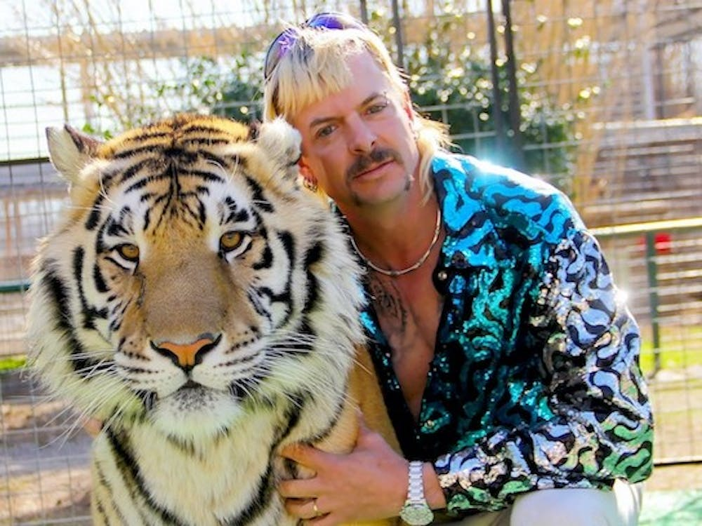 """<p>""""Tiger King"""" follows the story of Joe Exotic, a """"mulleted, gun-toting polygamist and country western singer.""""</p>"""