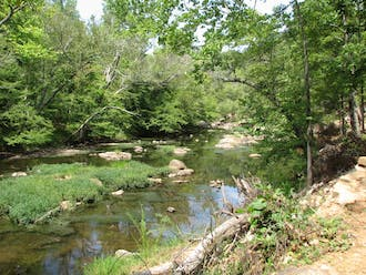 The Eno River State Park in Durham features 30 miles of hiking trails and a shallow, winding stream.