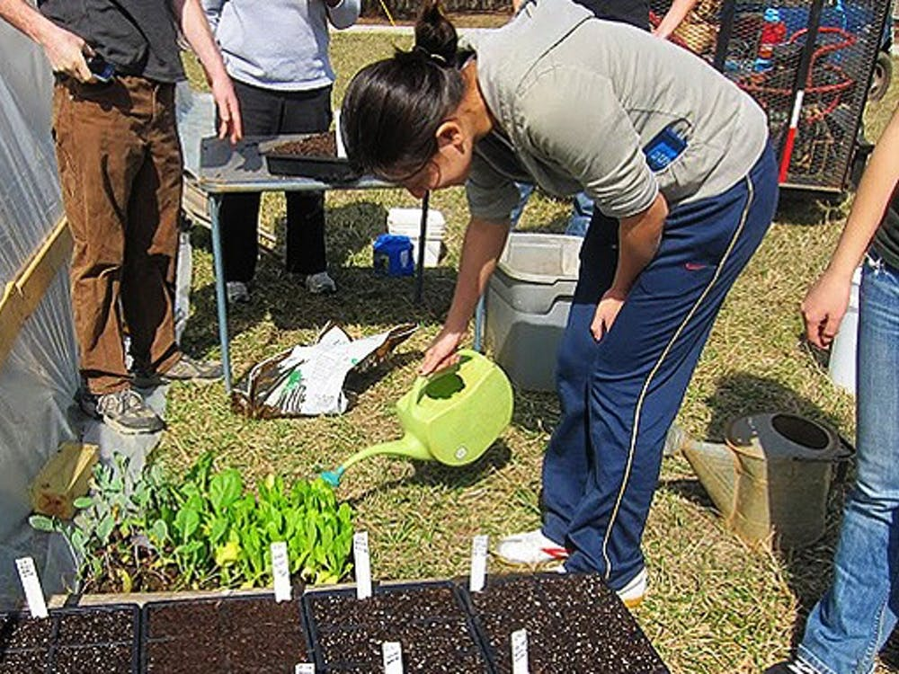 Duke professors are encouraging students to get involved with the on-campus sustainable farm. Students in Markets and Management Studies 170 developed a marketing plan for the farm as a final project.