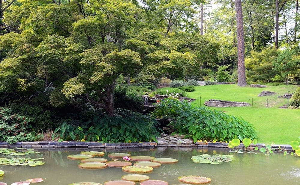 As the beginning of the final stretch of classes, spring break brings warmer weather and spirits — and usually a few more visitors to the Duke Gardens.