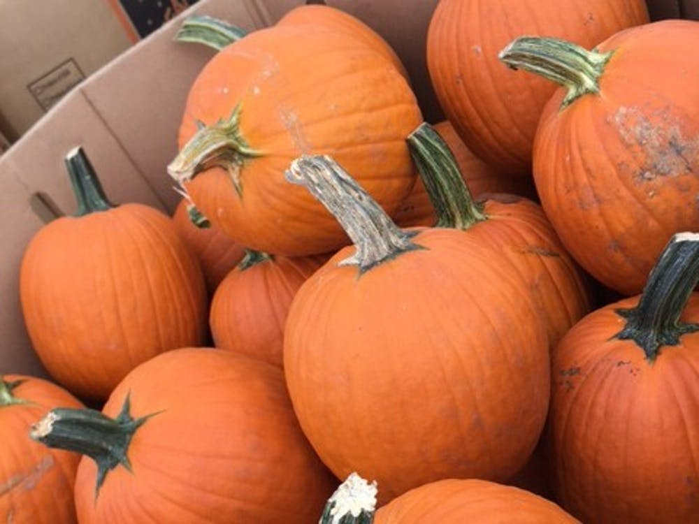 <p>2020 marks the 50th season for Durham's Perkins Orchard.&nbsp;</p>