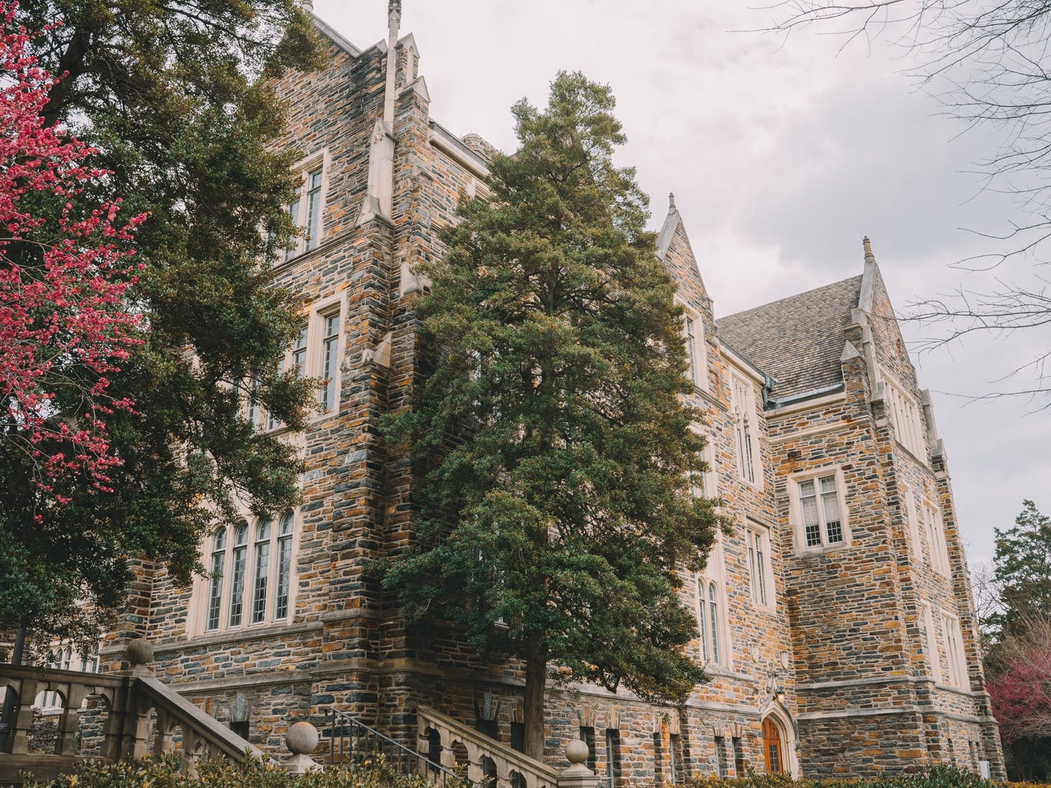 The Reuben-Cooke Building, located on Duke's West Campus, is named after Wilhelmina Reuben-Cooke. She was one of the first five African American undergraduates to attend Duke.