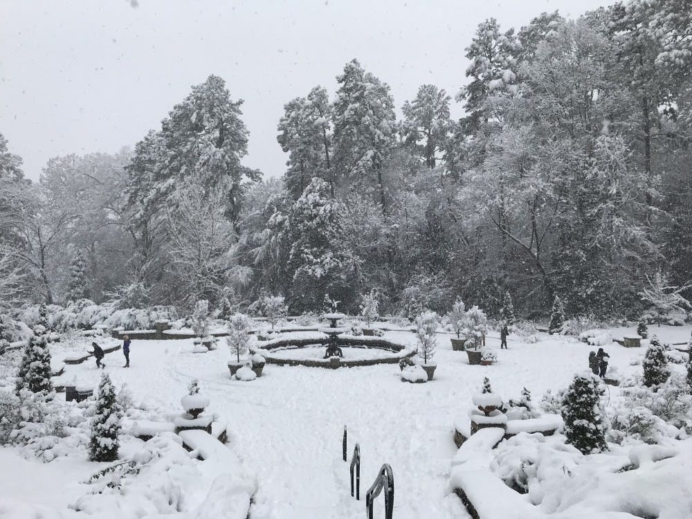 Visitors pause to snap photos of the gardens blanketed in this rare ten inches of snow.