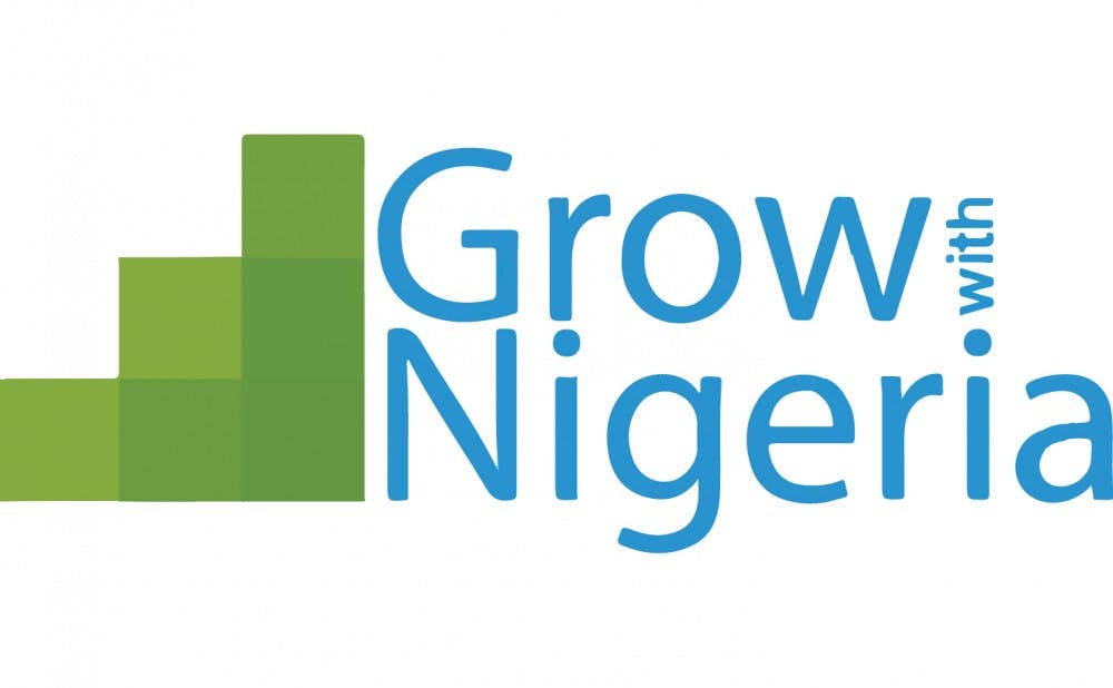 <p>Grow with Nigeria offers summer programs for high school students in Nigeria, allowing them to gain&nbsp;hands-on experience in STEM fields.</p>