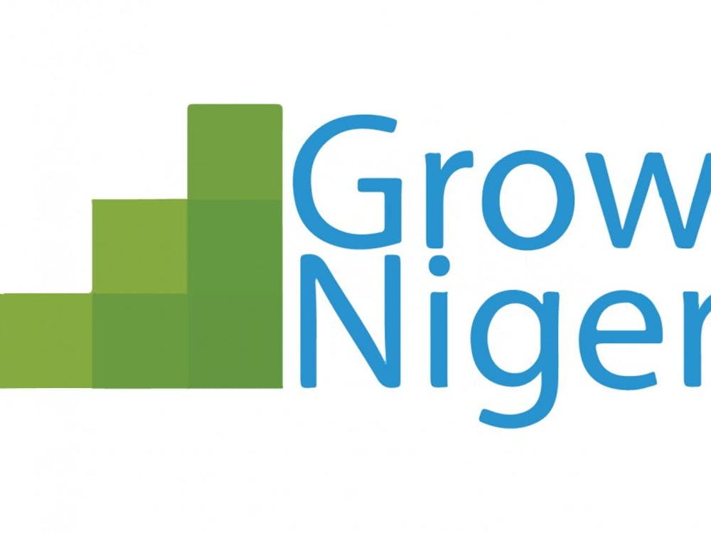 Grow with Nigeria offers summer programs for high school students in Nigeria, allowing them to gain hands-on experience in STEM fields.