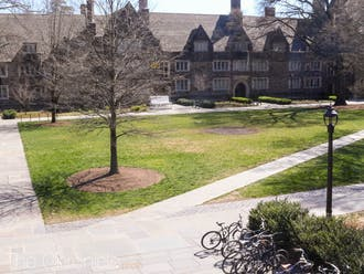 Last spring marked the start of the COVID-19 pandemic for Duke students. Just like the trees, the campus was barren - students were sent home, with no return in sight.