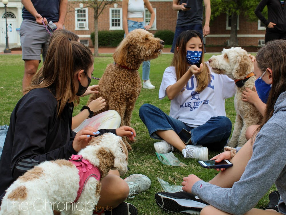 """<p>First-year students play with dogs at a Sunday event planned by two faculty-in-residence: legendary former Dean of Students Sue Wasiolek and Zbigniew Kabala, associate professor of civil and environmental engineering. Wasiolek, the faculty-in-residence in Gilbert-Addoms dorm, said she's held the event for years as a way to help students relax as the semester draws to a close. """"Dogs seem to do that for us,"""" she said, adding that this year's event featured masks, social distancing and dog treats.</p>"""