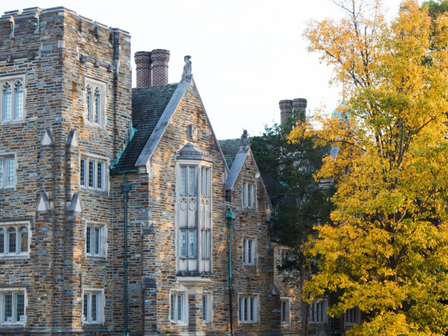 Changing leaves provide a colorful view for the residents of Kilgo Quad.