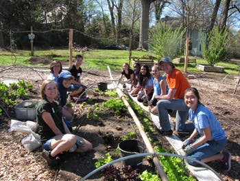 Carolina Campus Community Garden partners with environmental honors fraternity Epsilon Etain 2017. Photo courtesy of Claire Lorch.