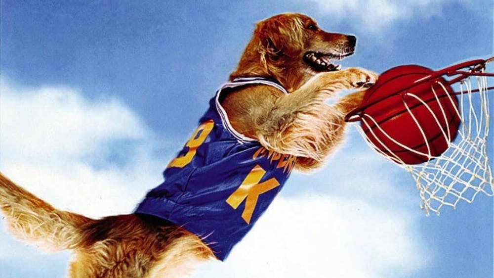 Could Air Bud lead a college team to an NCAA championship?